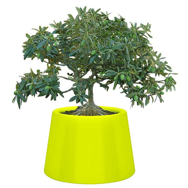 SARDANA Vase: light up your flowers with this generous outdoor pot!